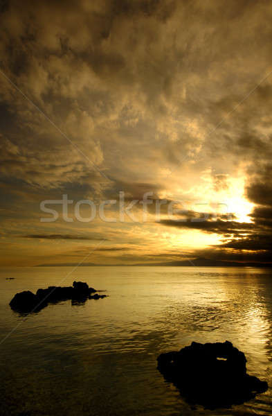 Golden sunset Stock photo © akarelias