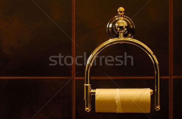 Rozpacz obraz gotowy papier toaletowy toczyć luksusowy Zdjęcia stock © akarelias