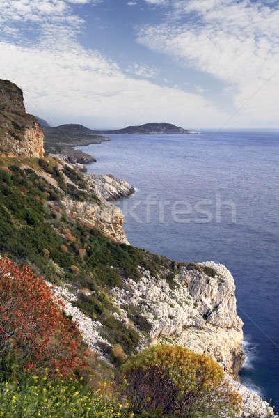 полуостров южный Греция пейзаж грубо местность Сток-фото © akarelias