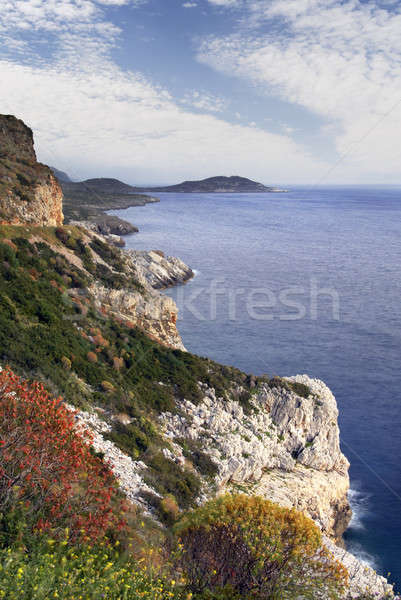 Yarımada güney Yunanistan manzara kaba arazi Stok fotoğraf © akarelias