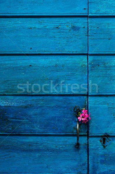 Azul porta flores imagem Foto stock © akarelias
