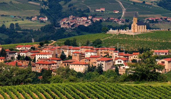 Village in Beaujolais region, France Stock photo © akarelias