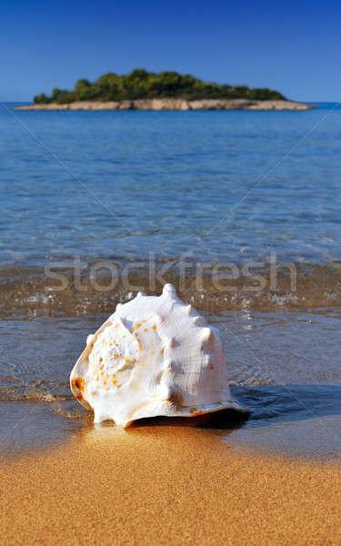 Akdeniz plaj altın küçük Stok fotoğraf © akarelias