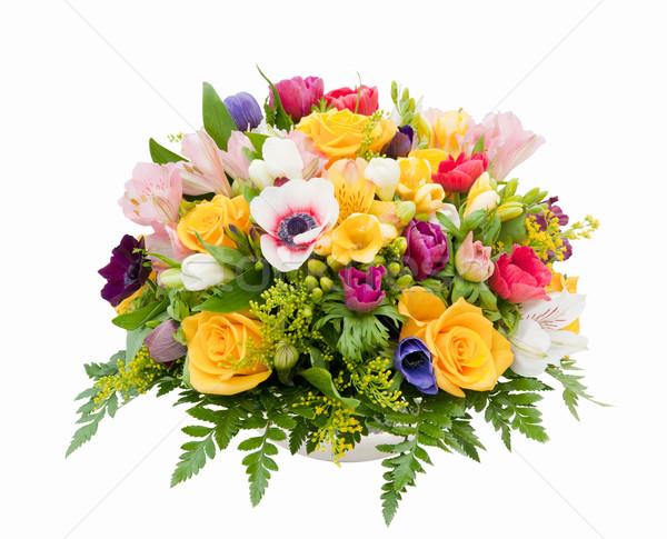 Spring flower assortment Stock photo © akarelias