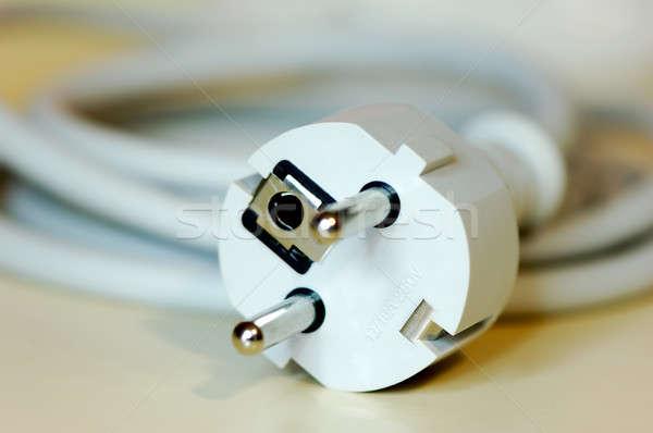 European safety plug Stock photo © akarelias