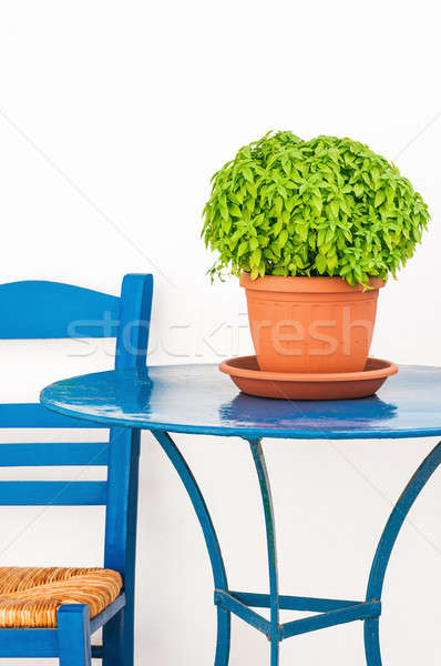 Blue chair and table with basil flowerpot Stock photo © akarelias