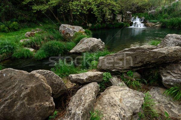 Garden of Eden Stock photo © akarelias