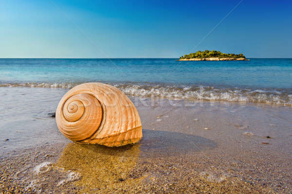 Akdeniz plaj deniz Stok fotoğraf © akarelias
