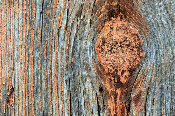 Wyblakły tekstury węzeł drewna Zdjęcia stock © akarelias