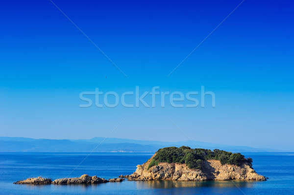 Small island in the Aegean Stock photo © akarelias