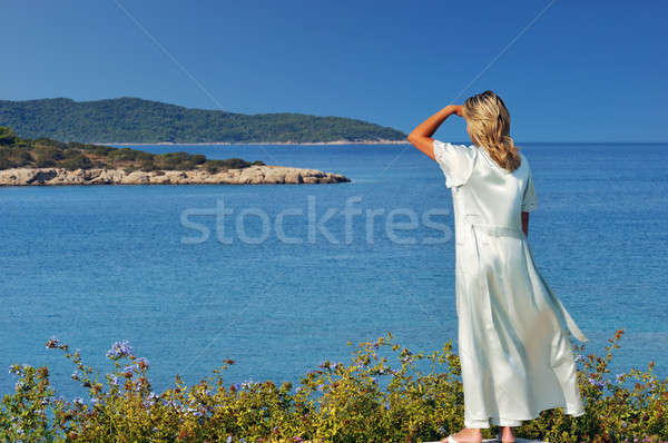 Morning view of the islands Stock photo © akarelias