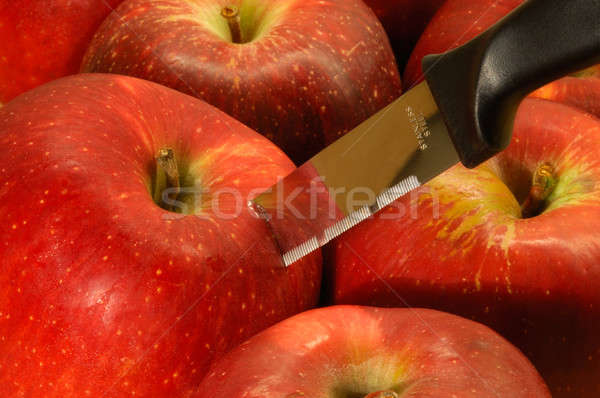 Stainless steel knife Stock photo © akarelias