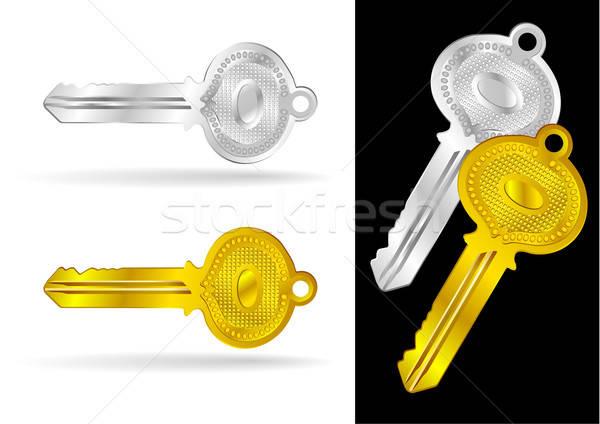Vintage Gold and Silver Keys - Vector Illustrations Stock photo © Akhilesh