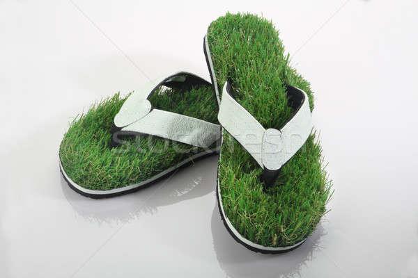 緑の草 スリッパ 白 自然 ストックフォト © Akhilesh