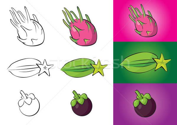 Exotic fruits illustrations - dragon fruit, carambola, mangostee Stock photo © Akhilesh