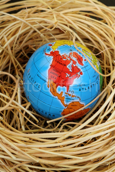Globe in a bird's nest Stock photo © Akhilesh