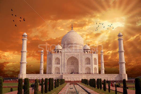 Beautiful Taj Mahal Architecture, India, Agra, Uttar Pradesh Stock photo © Akhilesh