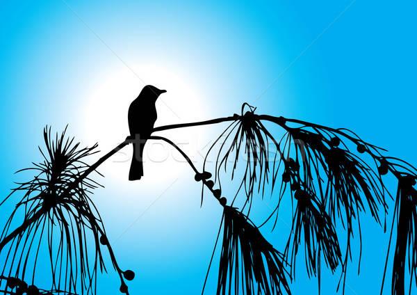 Bird on a tree Stock photo © Akhilesh