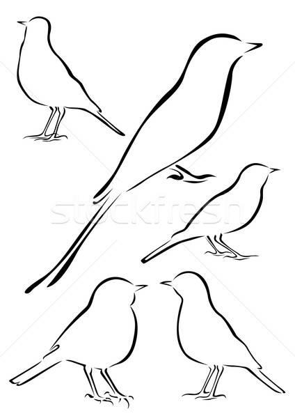 Birds Vector Illustrations in Brush Strokes Stock photo © Akhilesh