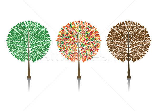Unterschiedlich Jahreszeit Baum Blätter Natur Kunst Stock foto © Akhilesh