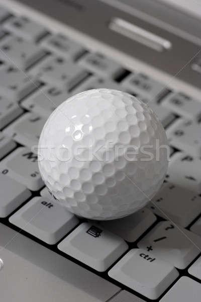 Online számítógépes játékok arany labda laptop számítógép Stock fotó © Akhilesh