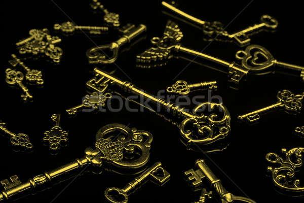 набор антикварная ключами черный Сток-фото © Akhilesh