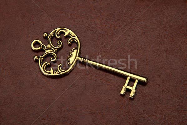 Klasszikus retro arany kulcs barna bőr Stock fotó © Akhilesh