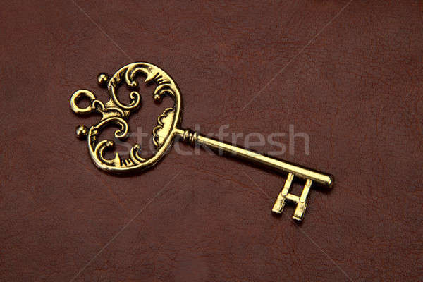 Vintage retro chiave rosolare pelle Foto d'archivio © Akhilesh