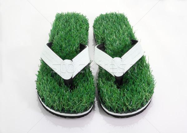 Flip-Flop Slipper with Green Grass Comfort Concept Stock photo © Akhilesh