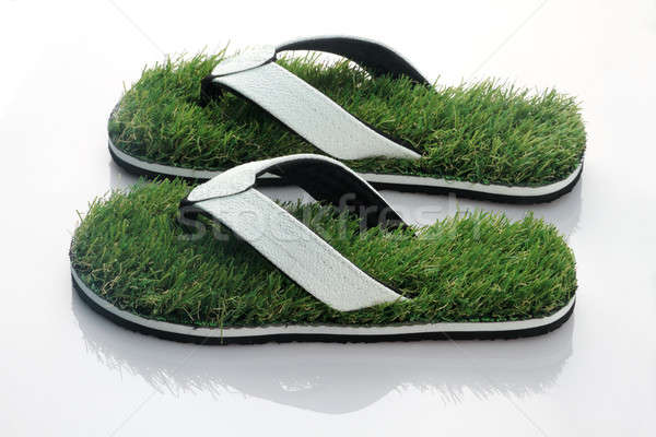 Nature's Walk - Slipper with Green Grass Stock photo © Akhilesh