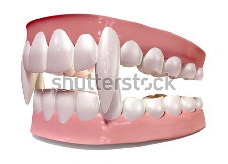 Gum Guard Fitted On Closed False Teeth Stock photo © albund