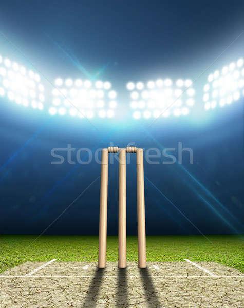 Cricket Stadium And Wickets Stock photo © albund