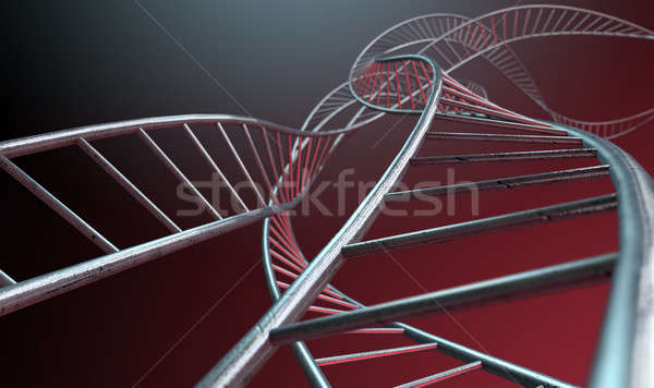Spiral Genetics Strands Stock photo © albund