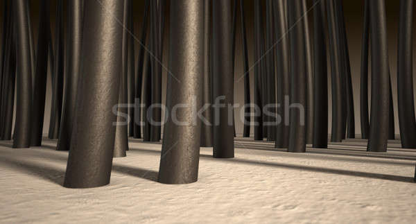 Microscópico pelo raíces primer plano vista Foto stock © albund