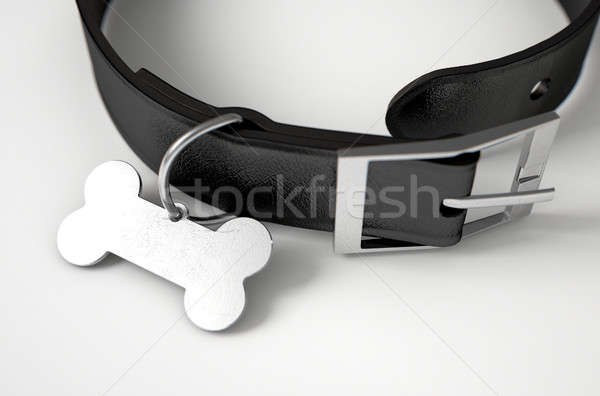 Leder tag zwarte hond staal bot Stockfoto © albund