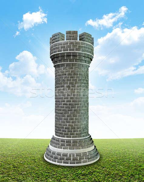 Brick Castle On Grass Stock photo © albund