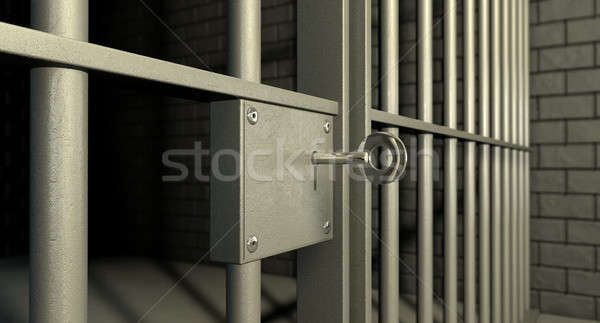 Jail Cell Door Lock Stock photo © albund
