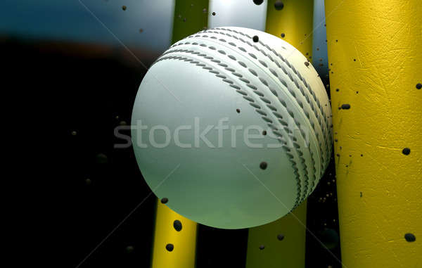 Cricket balle particules nuit blanche cuir Photo stock © albund
