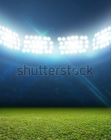 Generic Floodlit Stadium Stock photo © albund