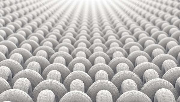 микро ткань микроскопический мнение простой Сток-фото © albund