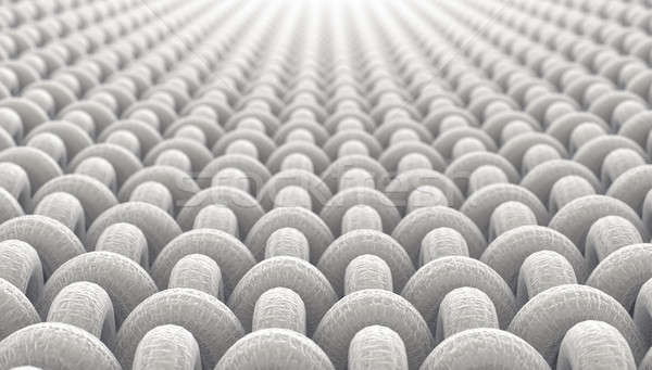 Micro tejido microscópico vista simple Foto stock © albund