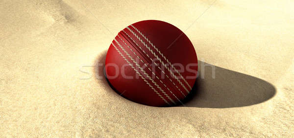 Cricket Ball Buried In Sand Stock photo © albund