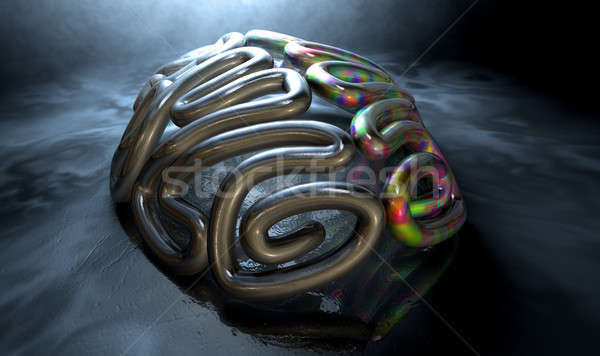 Left And Right Brain Concept Stock photo © albund