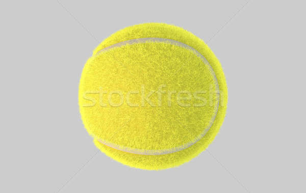 Tennis Ball Stock photo © albund