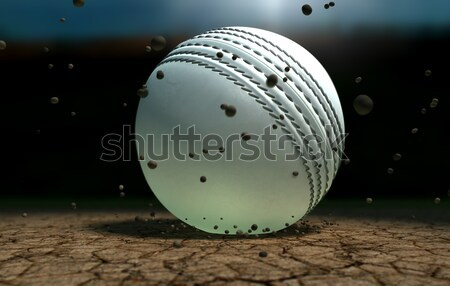 Rugby Ball Crushed Into The Dirt Stock photo © albund