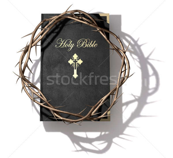 Bible And Crown Of Thorns Stock photo © albund