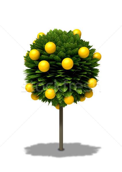 Stilizált narancsfa rajz szabvány alakú Stock fotó © albund