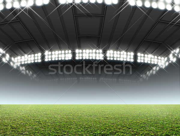 Indoor Stadium Generic Stock photo © albund
