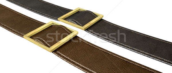 Belt And Buckle Stock photo © albund