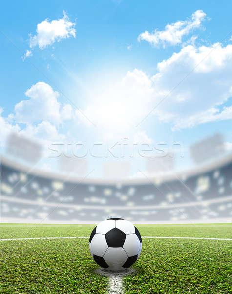 Stadium Soccer Pitch And Ball Stock photo © albund